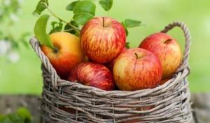 ябълки за бели зъби
