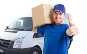 Portrait of an handsome happy deliverer
