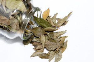 Dried bay leaves spilling out of a glass jar, used as an aromatic seasoning in cooking