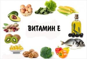 ВИТАМИН Е-ХРАНИ