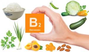 храни с витамин B2