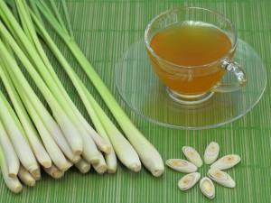 чай от лимонова трева